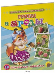 Грибы и ягоды. 16 обучающих карточек