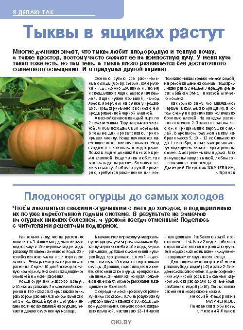 Тыквы в ящиках растут 22 / 2018 Сад, огород- кормилец и лекарь