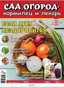 Если луку нездоровится 10 / 2019 Сад, огород- кормилец и лекарь