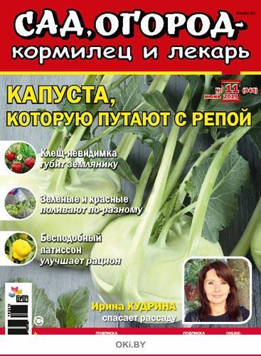 Капуста, которую путают с репой 11 / 2019 Сад, огород- кормилец и лекарь