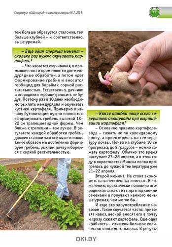 Картофель и корнеплоды. Повышаем урожайность 7 / 2019 Спецвыпуск «Сад огород - кормилец и лекарь»