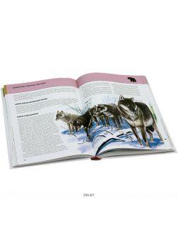 Животные. Полная энциклопедия (мел. ) (eks)