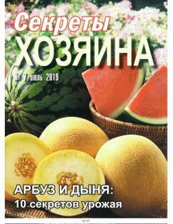 Секреты хозяина 7 / 2019