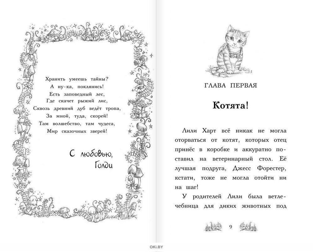 Лес Дружбы. Котёнок Белла, или Любопытный носик (eks)