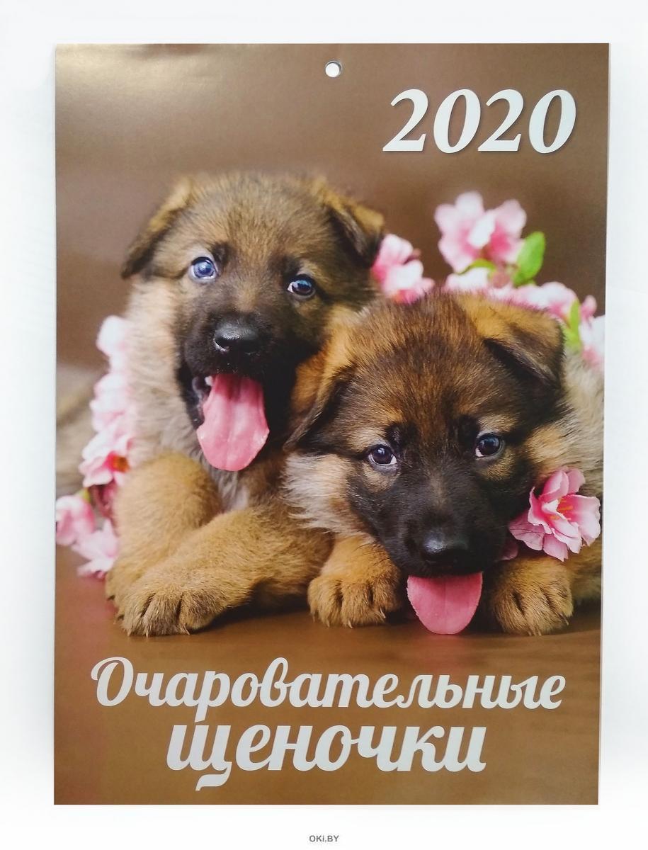 Календарь «Очаровательные щеночки» на 2020 год