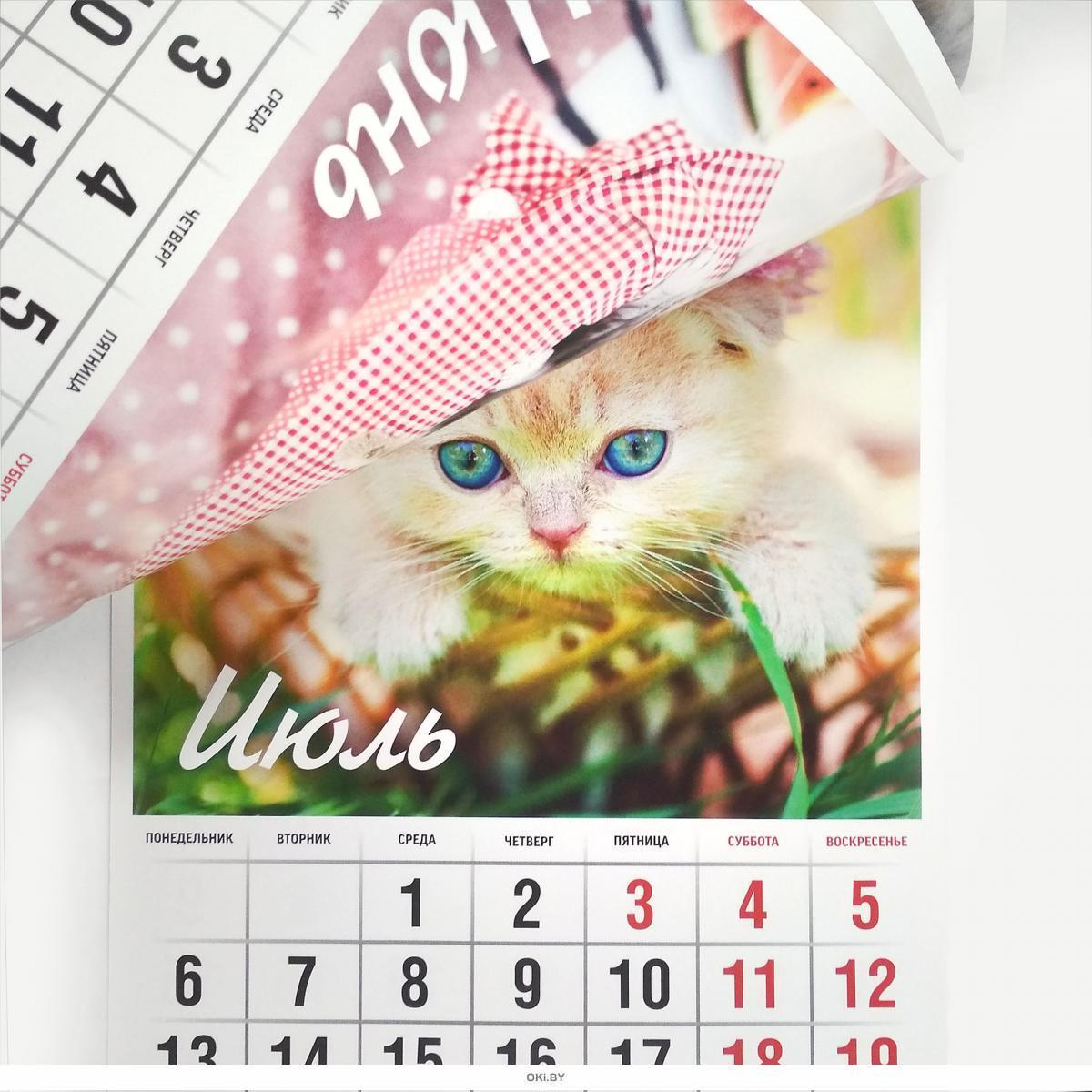Календарь «Любимые котята» на 2020 год