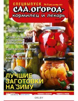 Лучшие заготовки на зиму 9 / 2019 Спецвыпуск «Сад огород - кормилец и лекарь»
