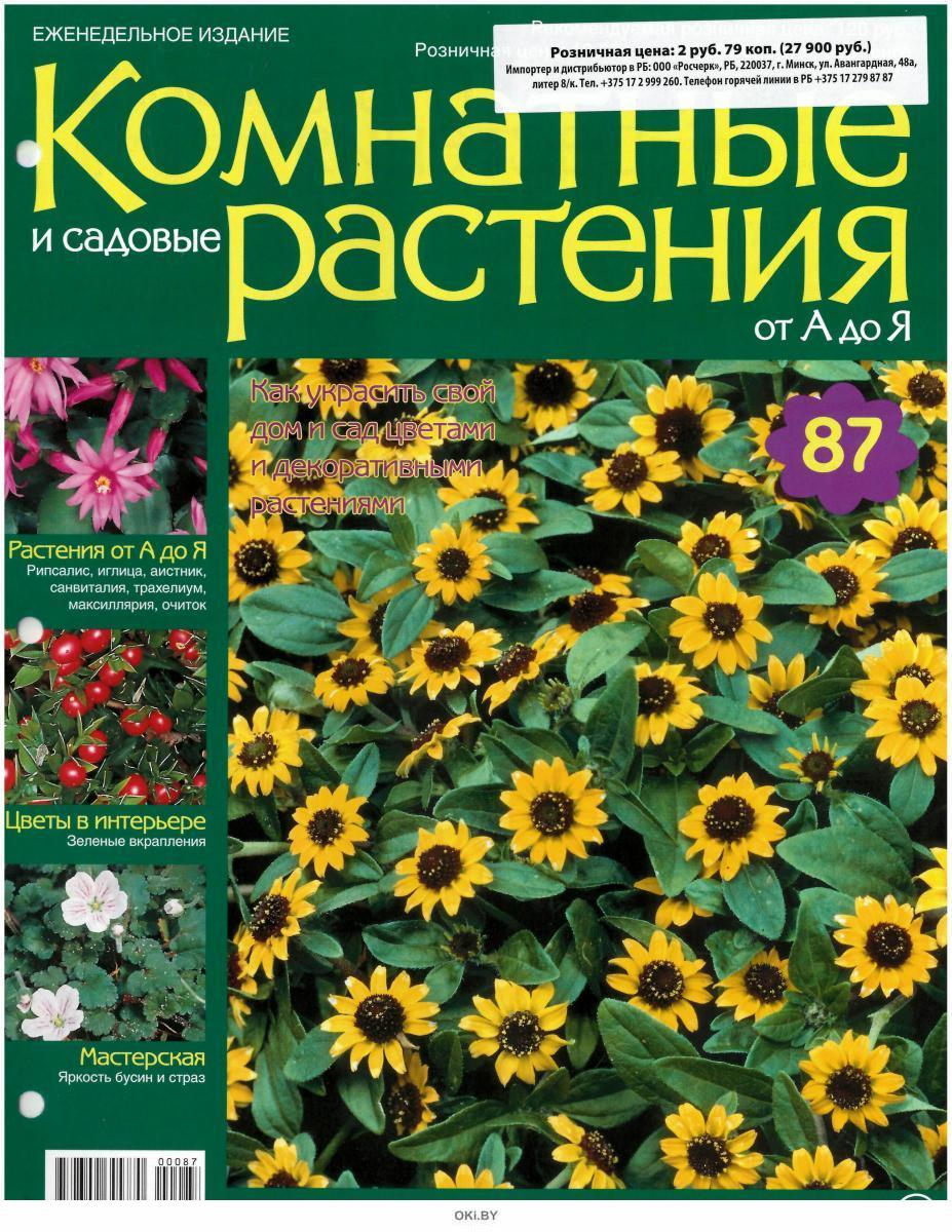 Комнатные и садовые растения от А до Я № 87