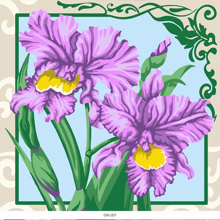Ирисы. Картины по номерам 30х30 см ( кол-во красок 12, арт. РН30-012)