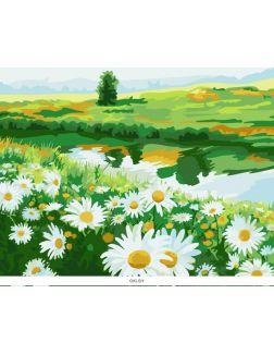 Запах ромашек. Картины по номерам 40х50 см ( кол-во красок 16, арт. РН-110)