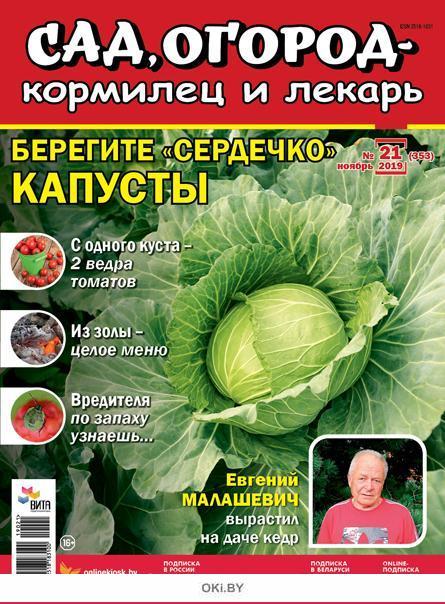 Берегите «сердечко» капусты 21 / 2019 Сад, огород- кормилец и лекарь
