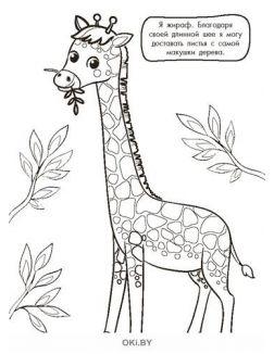 Вот как я умею! или Пушистые секреты № 10. Раскраска с заданиями «Играю! Рисую! Фантазирую!»