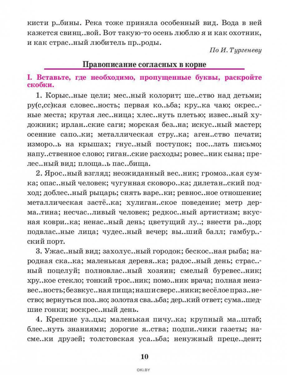 Русский язык. Тренажер по орфографии и пунктуации. 6 класс (Балуш Т. В. )