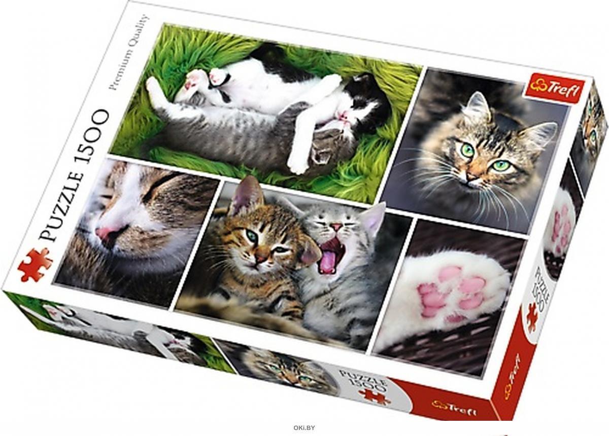 Пазл «Котята. Коллаж» (1500 элементов)