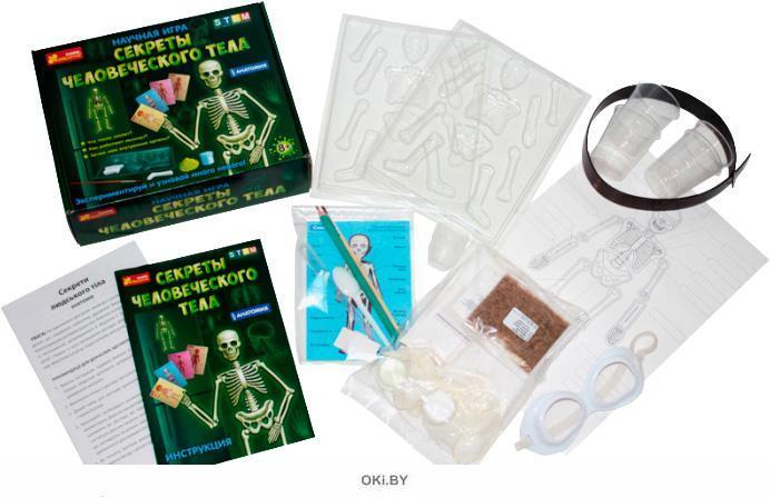 Секреты человеческого тела - научная настольная игра
