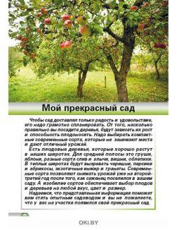 Мой прекрасный сад 2 / 2020 Спецвыпуск «Сад огород - кормилец и лекарь»