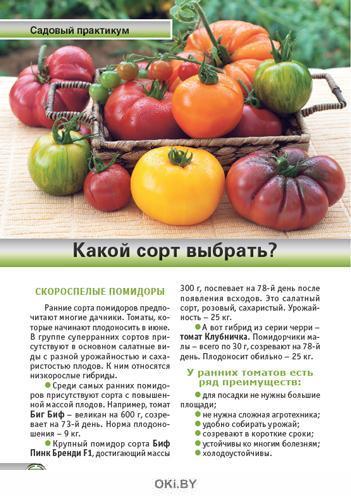 Огурцы и помидоры на любой вкус 3 / 2020 Спецвыпуск «Сад огород - кормилец и лекарь»