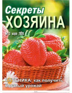 Секреты хозяина 3 / 2020