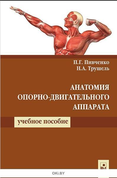 Анатомия опорно-двигательного аппарата: учебное пособие (4-е издание)