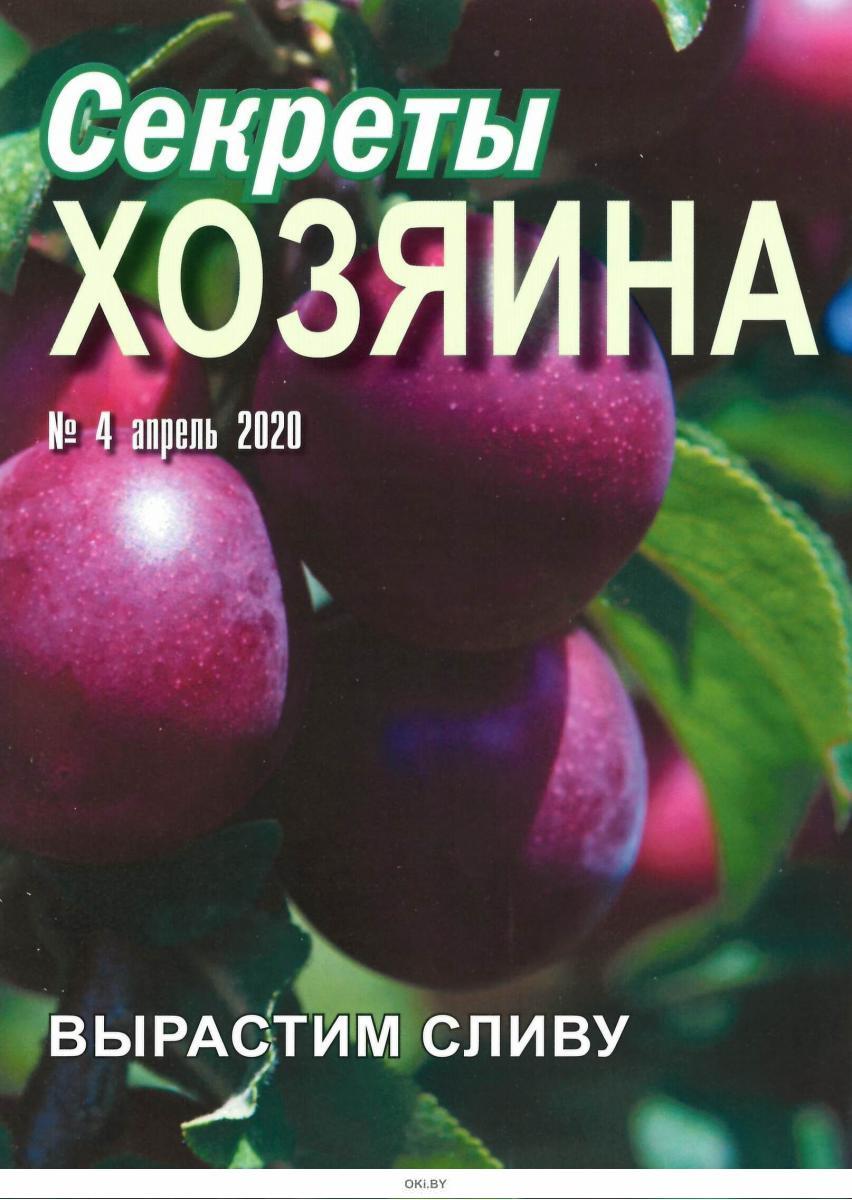 Секреты хозяина 4 / 2020