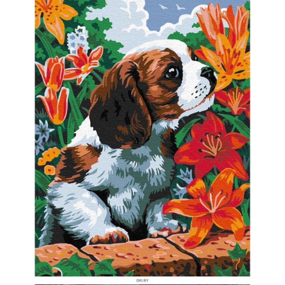 Щенок в саду - живопись по номерам на картоне 30х40см