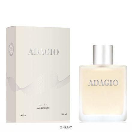 Adagio - туалетная вода для мужчин 100 мл (Адажио)