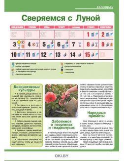 Сеем овощи для второго урожая 14 / 2020 Сад, огород - кормилец и лекарь