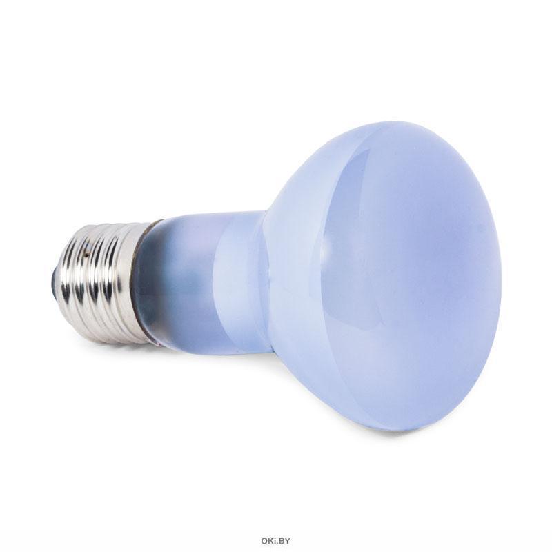 Лампа дневная неодимовая Friendly, 100Вт