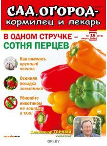 В одном стручке сотня перцев 16 / 2020 Сад, огород- кормилец и лекарь