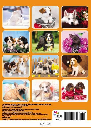 Календарь «Очаровательные щенки» на 2021 год (А4)