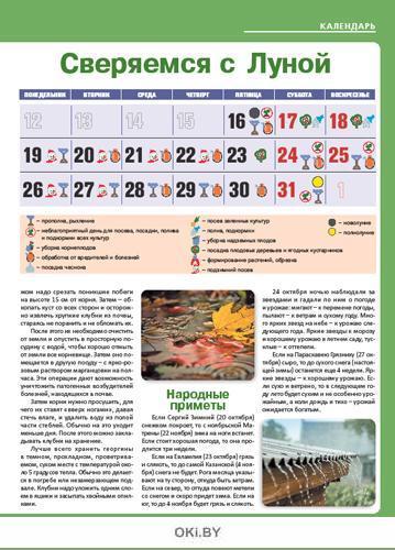 Сажаем ежевику 19 / 2020 Сад огород - кормилец и лекарь