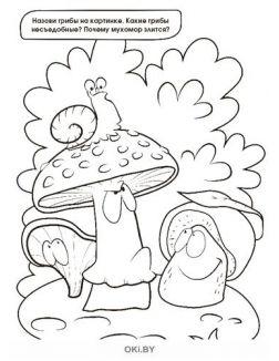 Элли в волшебной стране № 16 . Раскраска с заданиями «Играю! Рисую! Фантазирую!»