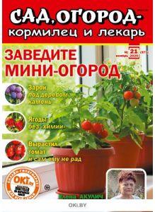 Заведите мини-огород 21 / 2020 Сад, огород- кормилец и лекарь