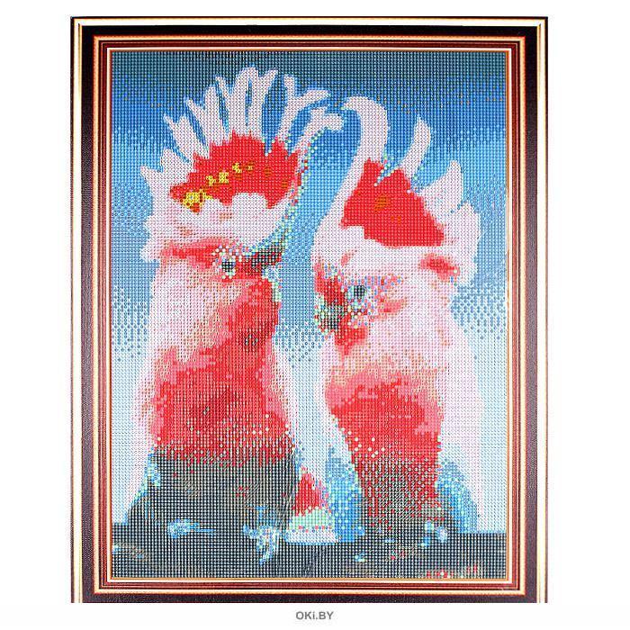 Пара попугаев какаду - алмазная мозаика (живопись) 40х50см Darvish