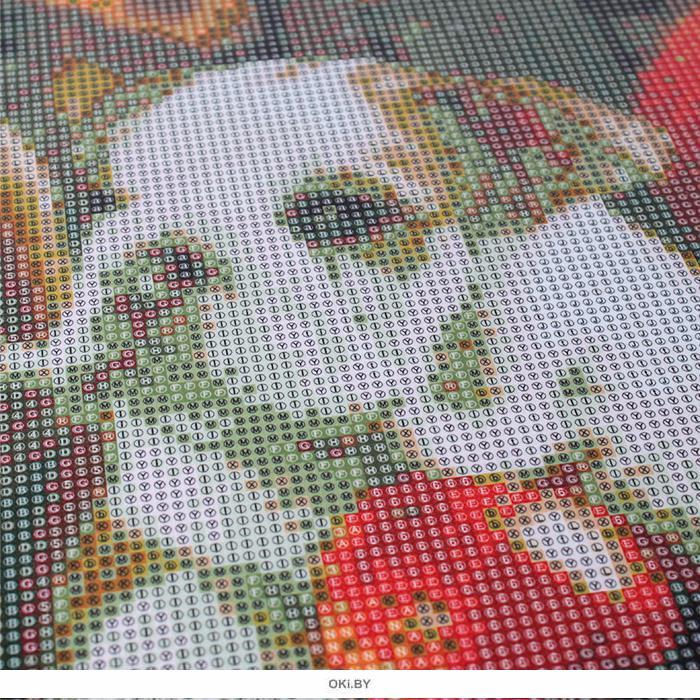 Бульдожки - алмазная мозаика 40х50 см Darvish