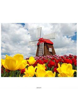 Мельница среди тюльпанов - алмазная мозаика 40х50 см Darvish