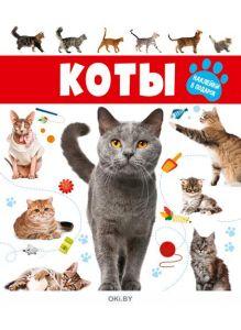 Коты № 4 (21) Волшебные наклейки. Играю! Рисую! Фантазирую!
