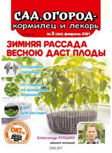 Зимняя рассада весною даст плоды 3 / 2021 Сад, огород — кормилец и лекарь