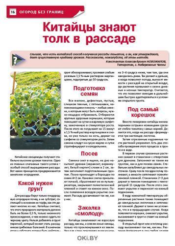 Тыква: гарантии достойного урожая 6 / 2021 Сад, огород — кормилец и лекарь