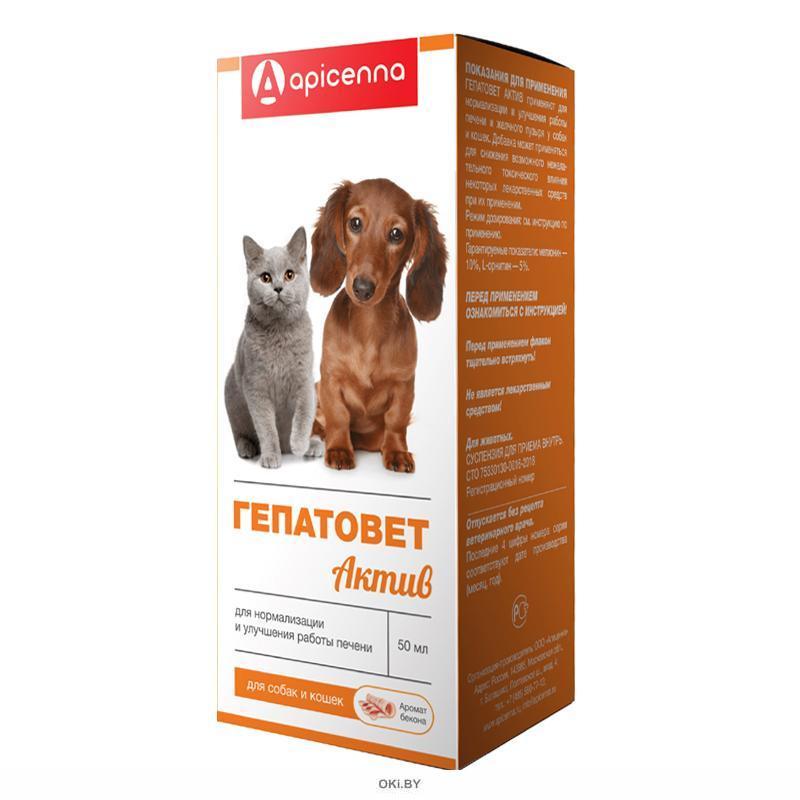 Гепатовет Актив суспензия для собак и кошек 50 мл