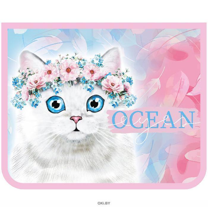 Папка для тетрадей  А5 на молнии Голубоглазый котик
