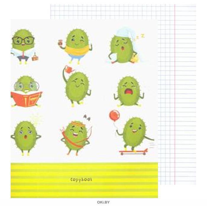 Тетрадь 48 листов А5 клетка офсет-2