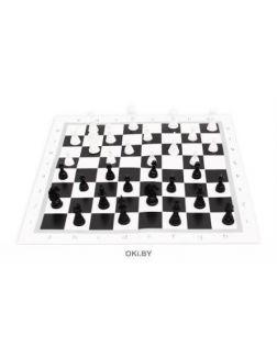 Шахматы с полем в пакете (Рыжий кот)