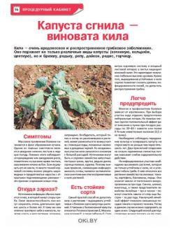 Надо ли кормить голубику? 11 / 2021 Сад, огород — кормилец и лекарь