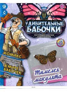 Удивительные бабочки № 7. Тимелея макулята