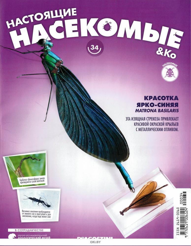 Настоящие насекомые № 34 (21)