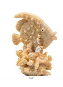 Грот «Рыба-ангел» размер S 70х50х83 мм Laguna