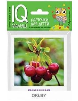 Карточки для детей «Что растёт в саду?»