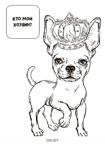Наклей и раскрась «Хвостатые модники и их хозяева» Играю! Рисую! Фантазирую! № 5 / 2021