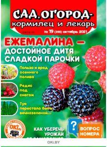 Ежемалина — достойное дитя сладкой парочки 19 / 2021 Сад, огород — кормилец и лекарь